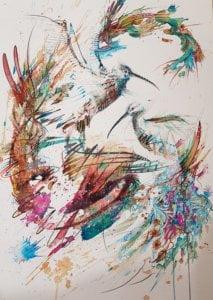 Carne Curlews