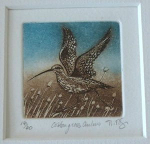 Curlew etching detail