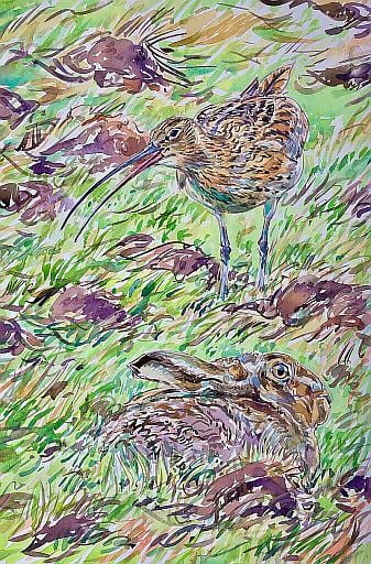 David-Bennett-Calling-Curlew-and-Hare-Watercolour-674x1024half