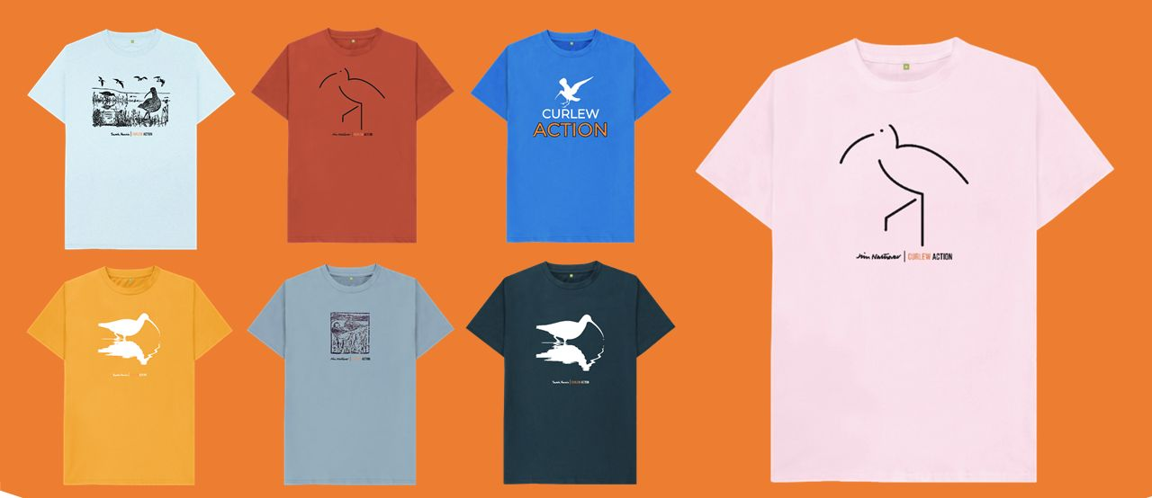 New t-shirts 1