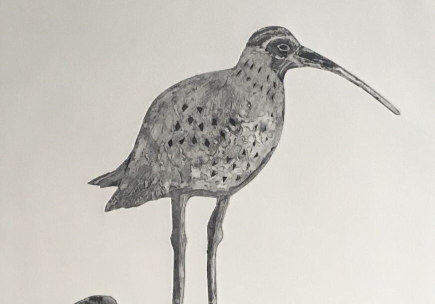 Colograph Curlew Print detail